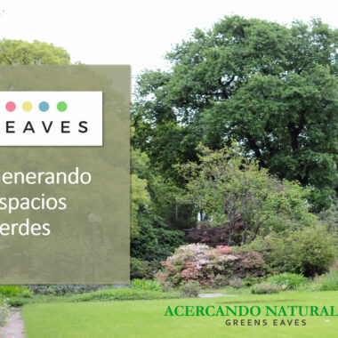 Greens EAVES